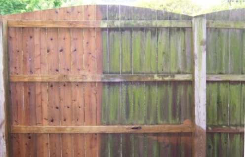 Pressure Washing - Fence
